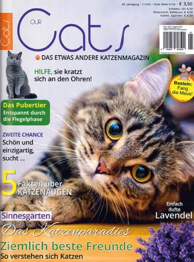 Our Cats im Lesezirkel mieten statt kaufen